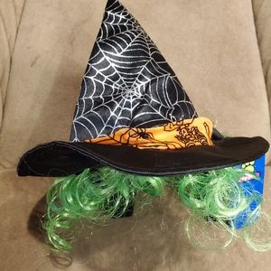 Pet witch hat with curly green hair.